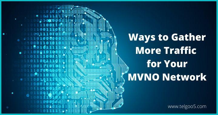 MVNO Service Providers, MVNO Provide
