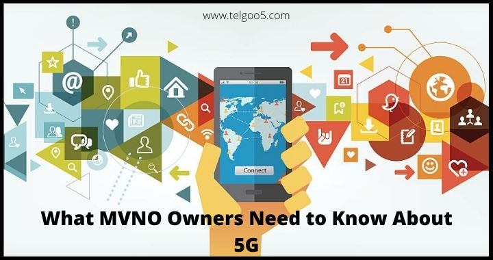 Wireless MVNO, MVNO Business